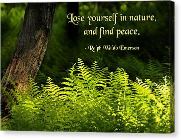 Lose Yourself In Nature Canvas Print by Mike Flynn