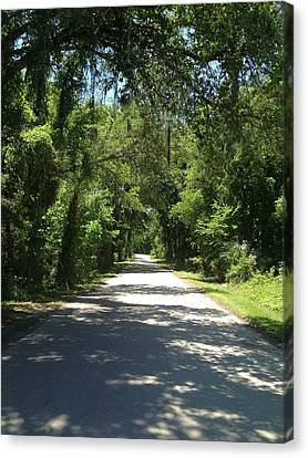Lost In Marion County Florida Canvas Print by Lisa Piper Menkin Stegeman