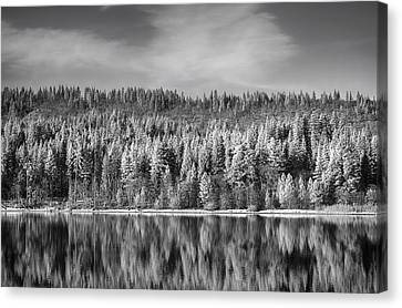 Lost In Reflection Canvas Print by Laurie Search