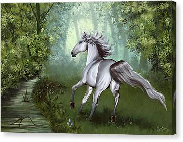 Lost In The Forest Canvas Print by Kate Black
