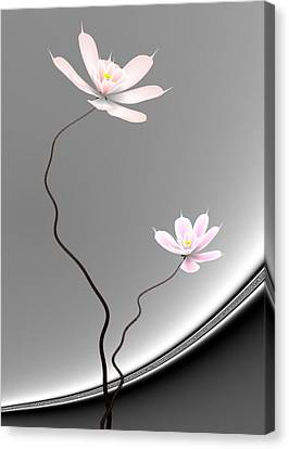 Lotus Twins Canvas Print by GuoJun Pan