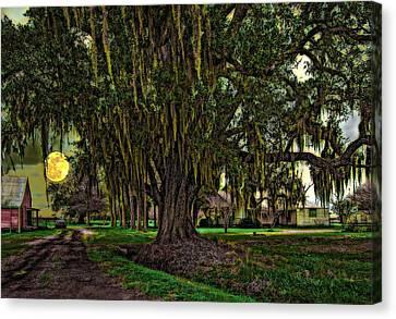 Louisiana Moon Rising Canvas Print by Steve Harrington