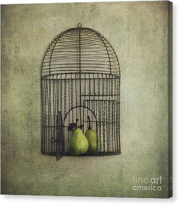 Love Is The Key Canvas Print by Priska Wettstein