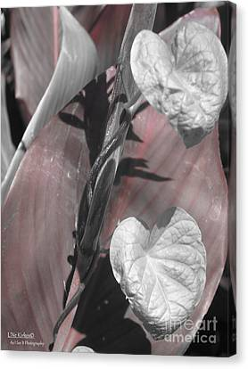 Love Knows No Color Canvas Print by Lne Kirkes