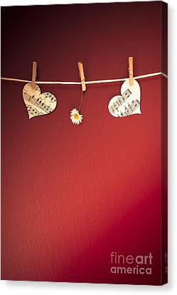 Love On The Line Canvas Print by Jan Bickerton