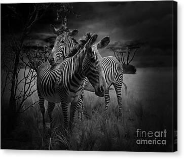 Love Season IIi - African Dream I Canvas Print by Xueling Zou