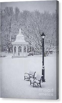 Love Through The Winter Canvas Print by Evelina Kremsdorf