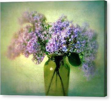 Lovely Lilac  Canvas Print by Jessica Jenney