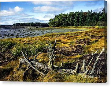 Low Tide Reach Road Canvas Print by Thomas R Fletcher