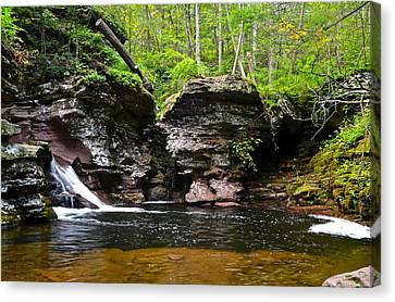 Lower Adams Falls Canvas Print by Frozen in Time Fine Art Photography
