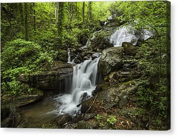 Lower Amicalola Falls Canvas Print by Debra and Dave Vanderlaan
