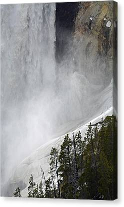 Lower Falls Of The Yellowstone Close-up In Spring Canvas Print by Bruce Gourley