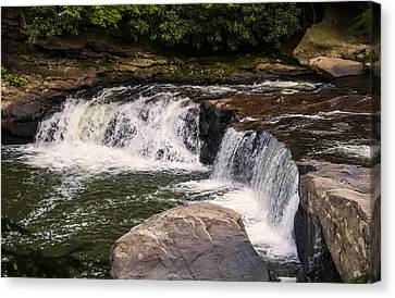 Lower Swallow Falls 2 Canvas Print by Chris Flees