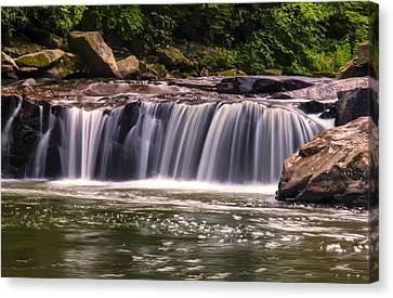 Lower Swallow Falls Center Section Canvas Print by Chris Flees