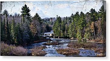 Lower Tahquamenon Falls Michigan Canvas Print by Evie Carrier