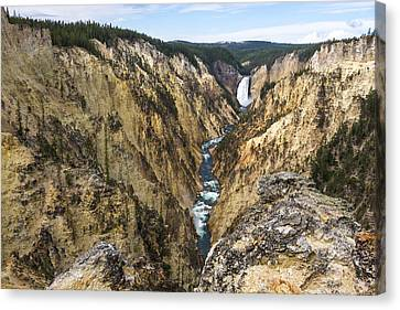 Lower Yellowstone Canyon Falls - Yellowstone National Park Canvas Print by Brian Harig