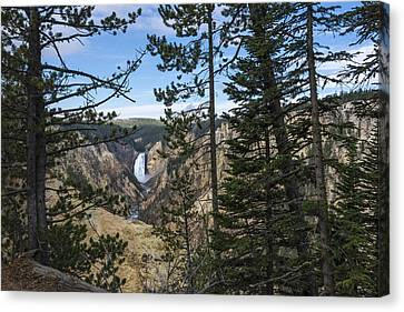 Lower Yellowstone Canyon Falls - Yellowstone National Park Wyoming Canvas Print by Brian Harig