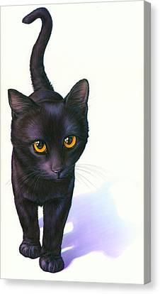 Lucky Cat Canvas Print by Andrew Farley