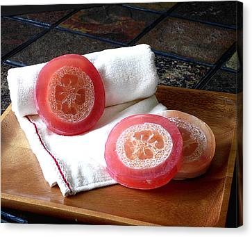 Luffa Red Soap Canvas Print by Anastasiya Malakhova