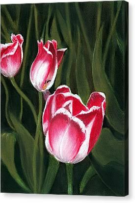 Luminous Canvas Print by Anastasiya Malakhova