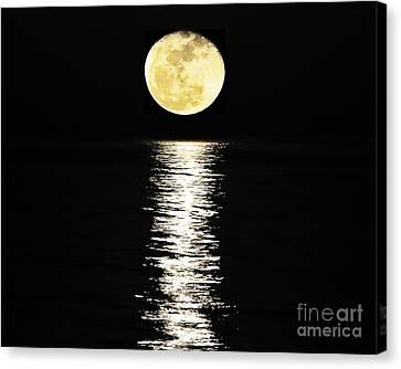 Lunar Lane 03 Canvas Print by Al Powell Photography USA