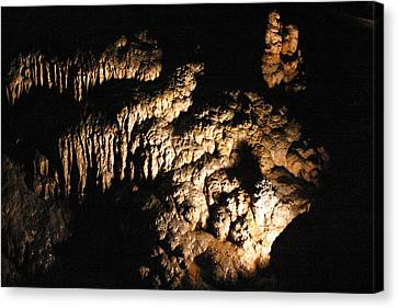 Luray Caverns - 121228 Canvas Print by DC Photographer