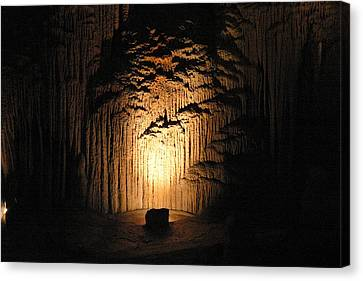Luray Caverns - 121288 Canvas Print by DC Photographer