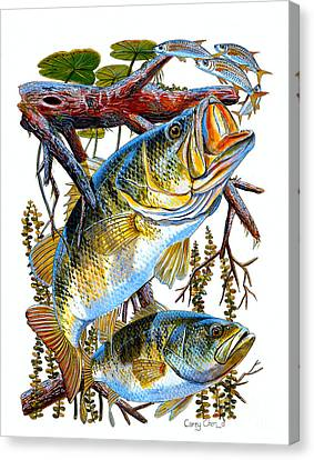 Lurking Bass Canvas Print by Carey Chen