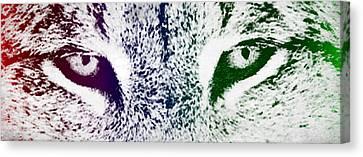Lynx Eyes Canvas Print by Aged Pixel