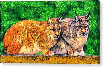 Lynx Canvas Print by George Rossidis
