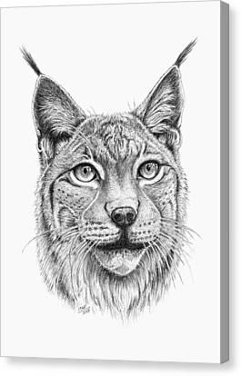 Lynx Portrait Canvas Print by Iren Faerevaag