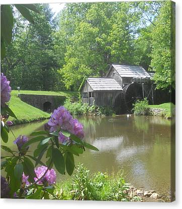 Mabry Mill In May Canvas Print by Diannah Lynch
