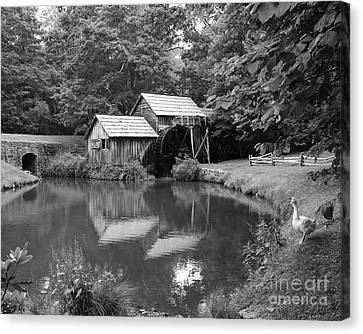 Mabry Mill Canvas Print by Mel Steinhauer