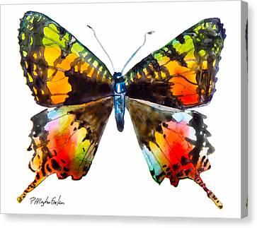 Madagascan Sunset Moth Canvas Print by Patricia Allingham Carlson
