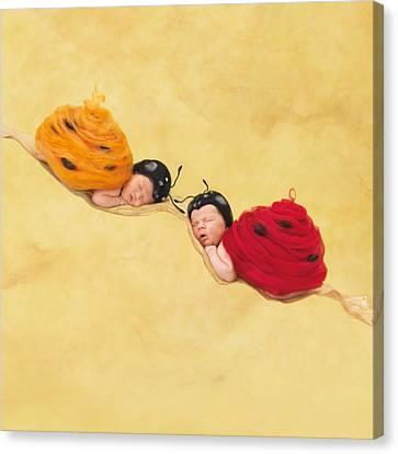 Dakota And Cameron Canvas Print by Anne Geddes
