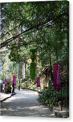 Maesa Elephant Camp - Chiang Mai Thailand - 01132 Canvas Print by DC Photographer
