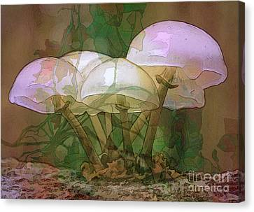 Magic Mushrooms Canvas Print by Ursula Freer