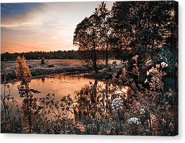 Magic Of Changes. Nature In Alien Skin Canvas Print by Jenny Rainbow
