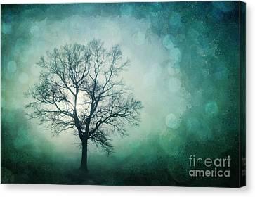 Magic Tree Canvas Print by Priska Wettstein