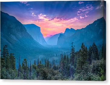 Magical Wonderland Canvas Print by Mike Lee