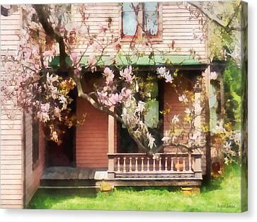 Magnolias By Back Porch Canvas Print by Susan Savad
