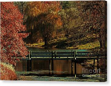 Mahoney State Park Canvas Print by Elizabeth Winter