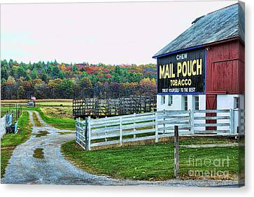 Mail Pouch Tobacco Barn In The Fall Canvas Print by Paul Ward