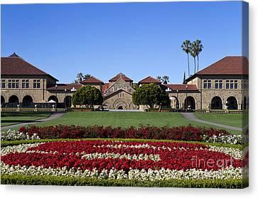 Main Quad Stanford California Canvas Print by Jason O Watson