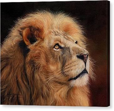 Majestic Lion Canvas Print by David Stribbling