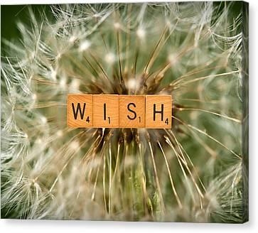 Make A Wish Canvas Print by  Onyonet  Photo Studios
