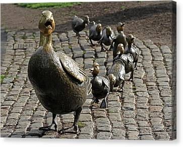 Make Way For Ducklings Canvas Print by Juergen Roth