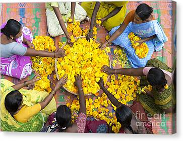 Making Flower Garlands Canvas Print by Tim Gainey
