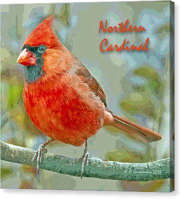 Canvas Print featuring the photograph Male Cardinal On Tree Branch by A Gurmankin
