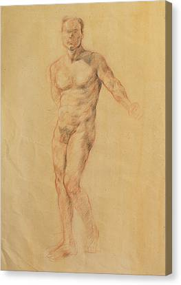 Male Nude 2 Canvas Print by Becky Kim